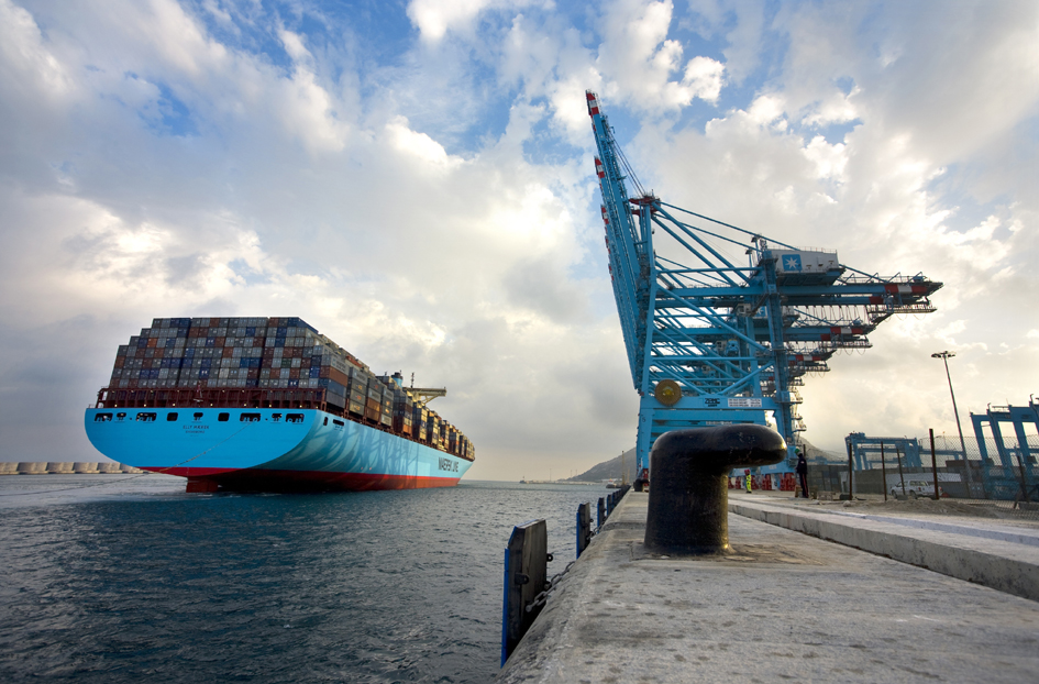 The Importance of Shipping Lines in Freight Forwarding